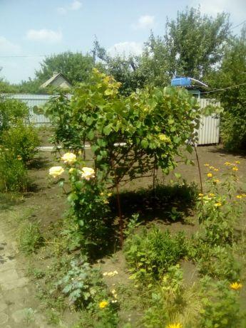 Продажа, Дача, Кировский район