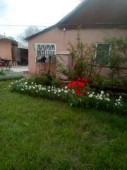 Продается Дом, Ласточкина , район Петровский, город Донецк, Украина